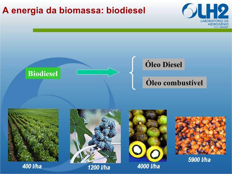 Biodiesel Óleo Diesel Óleo combustível A energia da biomassa: biodiesel 5900 l/ha 4000 l/ha 400 l/ha 1200 l/ha