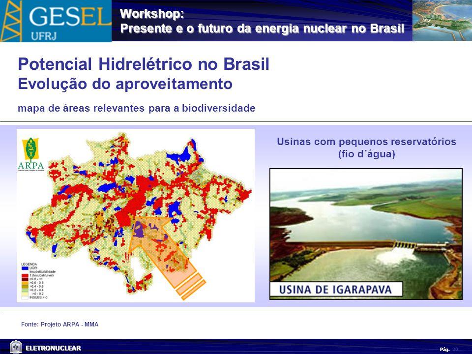 Pág. ELETRONUCLEAR Workshop: Presente e o futuro da energia nuclear no Brasil 20 Fonte: Projeto ARPA - MMA mapa de áreas relevantes para a biodiversid