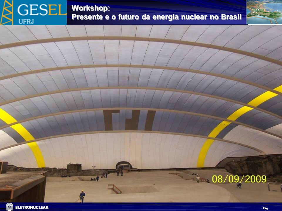 Pág. ELETRONUCLEAR Workshop: Presente e o futuro da energia nuclear no Brasil