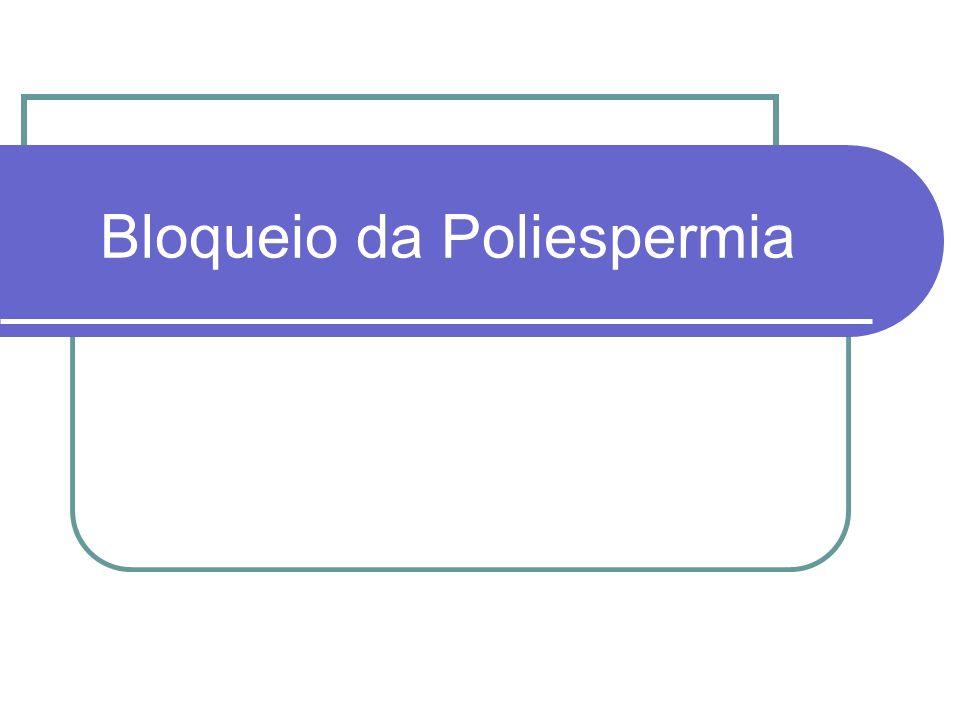 Bloqueio da Poliespermia