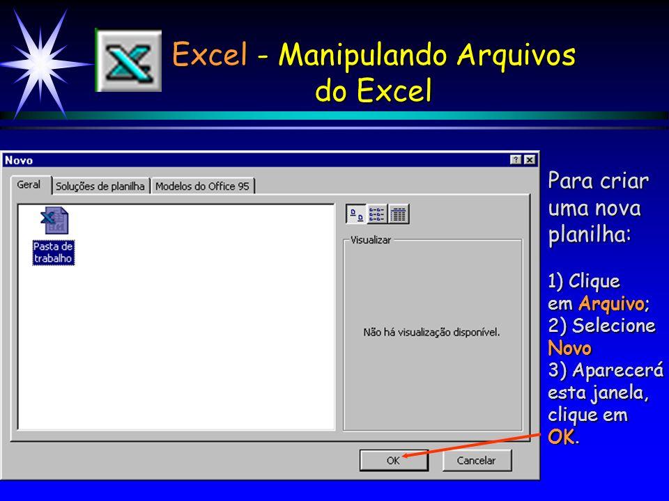 Excel - Manipulando Arquivos do Excel Novo - Cria uma nova pasta de trabalho, inicialmente com 3 planilhas vazias. Abrir - Abre uma pasta de trabalho
