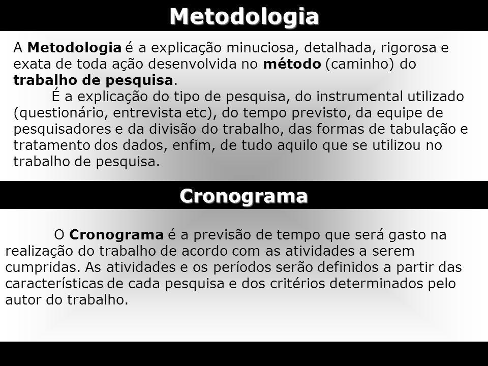 Metodologia A Metodologia é a explicação minuciosa, detalhada, rigorosa e exata de toda ação desenvolvida no método (caminho) do trabalho de pesquisa.
