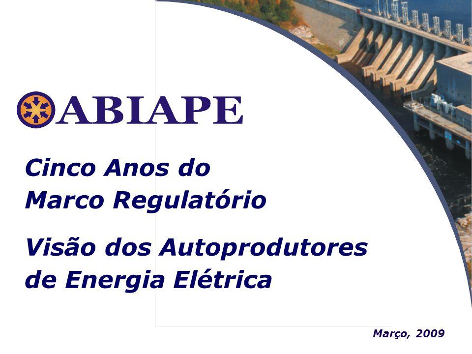 Março, 2009 Cinco Anos do Marco Regulatório Visão dos Autoprodutores de Energia Elétrica