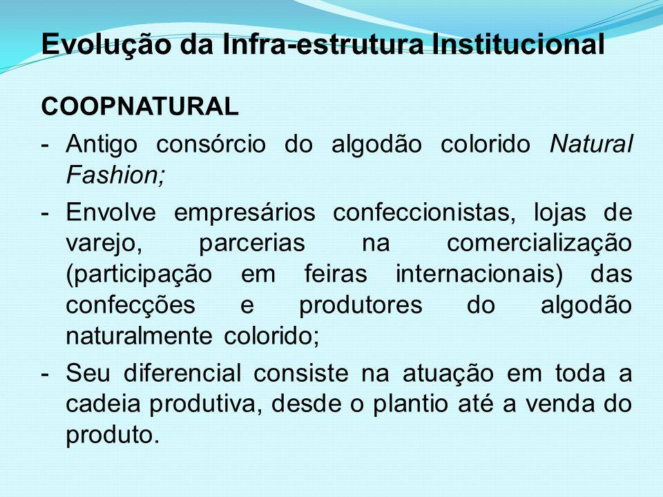 Evolução da Infra-estrutura Institucional COOPNATURAL -Antigo consórcio do algodão colorido Natural Fashion; -Envolve empresários confeccionistas, loj