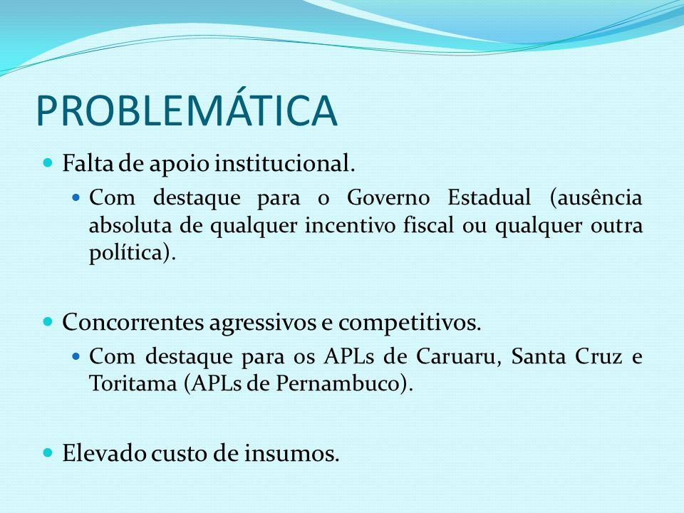 PROBLEMÁTICA Falta de apoio institucional. Com destaque para o Governo Estadual (ausência absoluta de qualquer incentivo fiscal ou qualquer outra polí