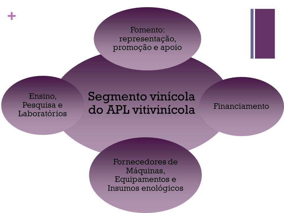 + Segmento vinícola do APL vitivinícola Fomento: representação, promoção e apoio Financiamento Fornecedores de Máquinas, Equipamentos e Insumos enológ