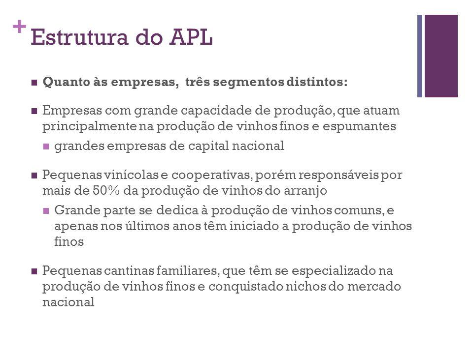 + Estrutura do APL Quanto às empresas, três segmentos distintos: Empresas com grande capacidade de produção, que atuam principalmente na produção de v