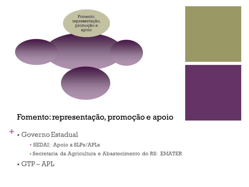 + Fomento: representação, promoção e apoio Governo Estadual SEDAI: Apoio a SLPs/APLs Secretaria da Agricultura e Abastecimento do RS: EMATER GTP – APL
