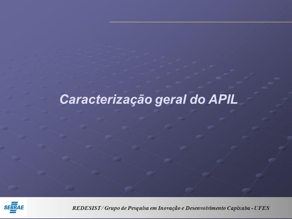 Caracterização geral do APIL REDESIST / Grupo de Pesquisa em Inovação e Desenvolvimento Capixaba - UFES