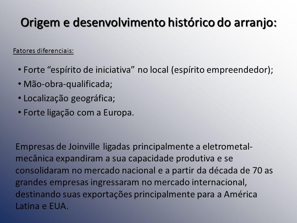 Origem e desenvolvimento histórico do arranjo: Forte espírito de iniciativa no local (espírito empreendedor); Mão-obra-qualificada; Localização geográ