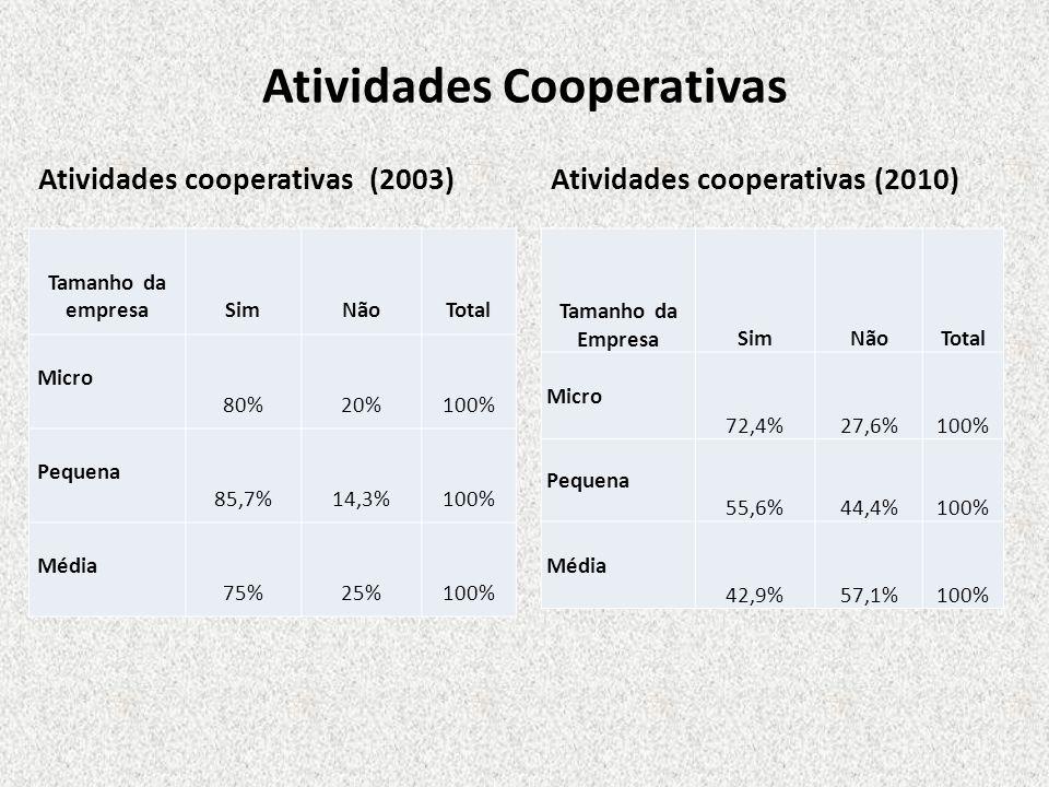 Atividades Cooperativas Atividades cooperativas (2003) Tamanho da empresaSimNãoTotal Micro 80%20%100% Pequena 85,7%14,3%100% Média 75%25%100% Atividad