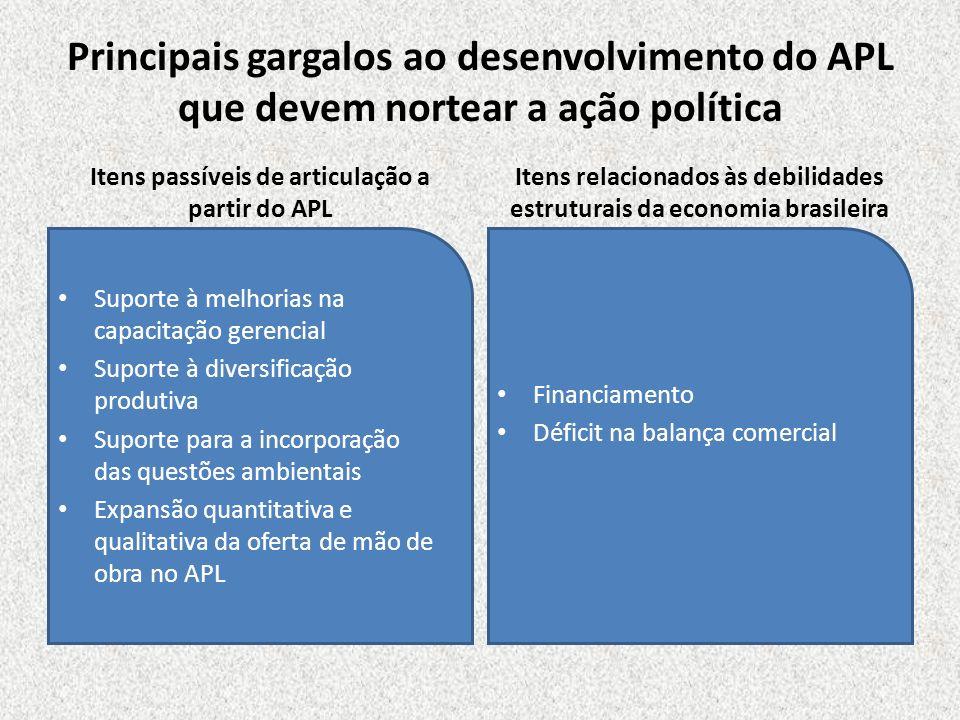 Principais gargalos ao desenvolvimento do APL que devem nortear a ação política Itens passíveis de articulação a partir do APL Suporte à melhorias na