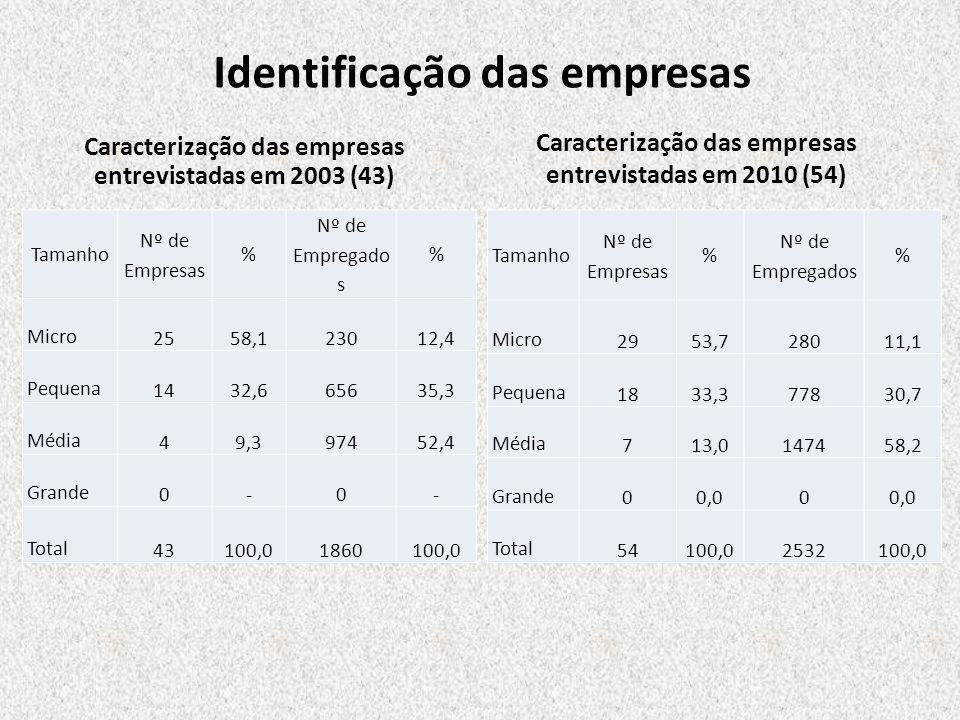 Identificação das empresas Caracterização das empresas entrevistadas em 2003 (43) Tamanho Nº de Empresas % Nº de Empregado s % Micro 2558,123012,4 Peq