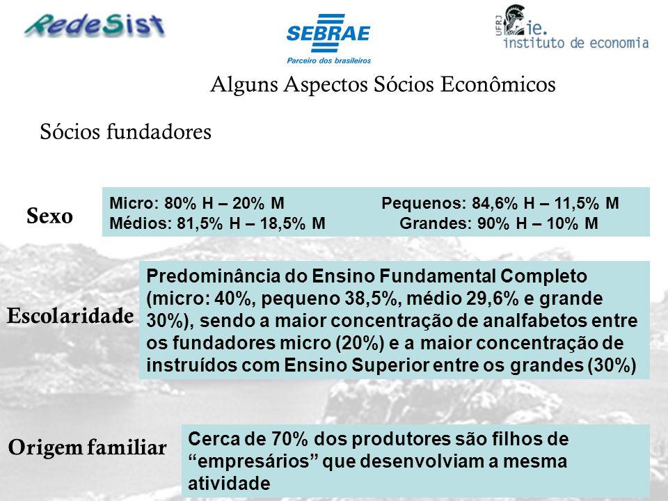 Alguns Aspectos Sócios Econômicos Sexo Sócios fundadores Micro: 80% H – 20% M Pequenos: 84,6% H – 11,5% M Médios: 81,5% H – 18,5% M Grandes: 90% H – 1