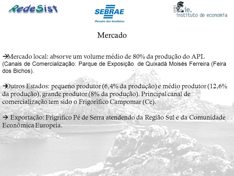 Mercado Outros Estados: pequeno produtor (6,4% da produção) e médio produtor (12,6% da produção), grande produtor (8% da produção). Principal canal de