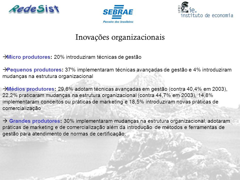 Inovações organizacionais Micro produtores: 20% introduziram técnicas de gestão Pequenos produtores: 37% implementaram técnicas avançadas de gestão e