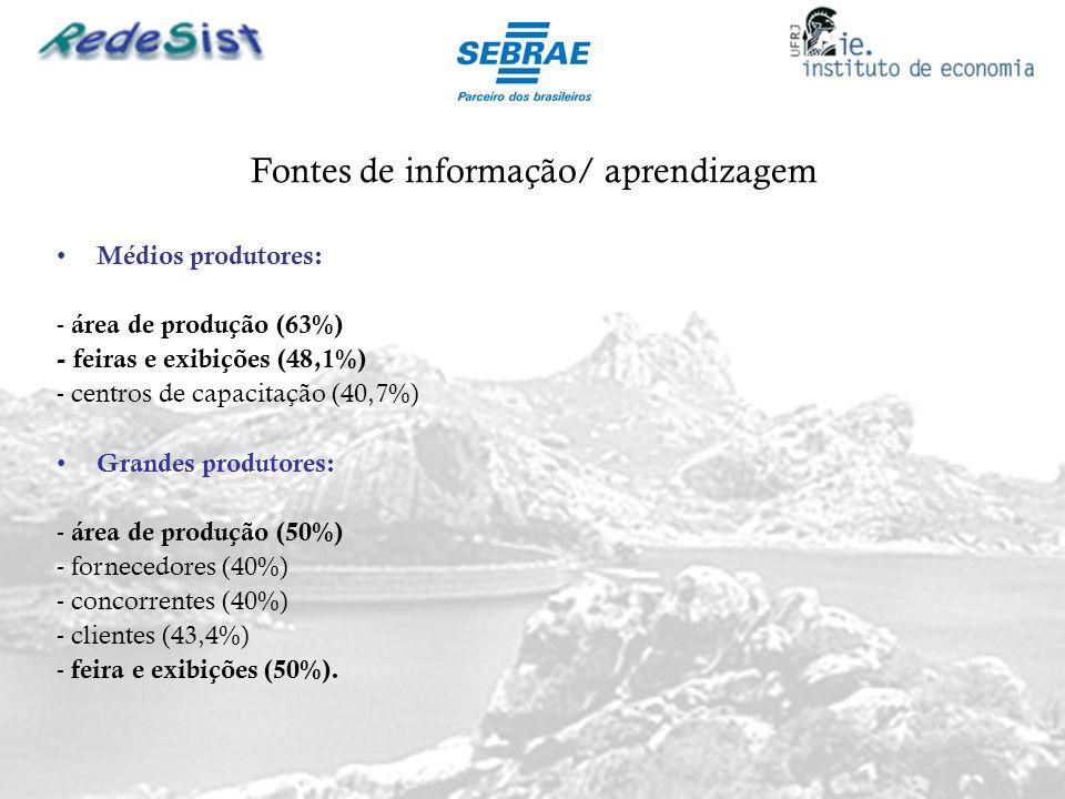 Fontes de informação/ aprendizagem Médios produtores: - área de produção (63%) - feiras e exibições (48,1%) - centros de capacitação (40,7%) Grandes p