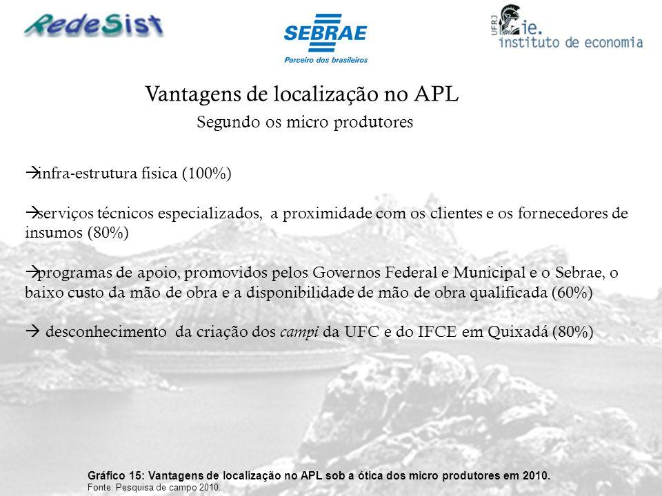 Vantagens de localização no APL Gráfico 15: Vantagens de localização no APL sob a ótica dos micro produtores em 2010. Fonte: Pesquisa de campo 2010. S
