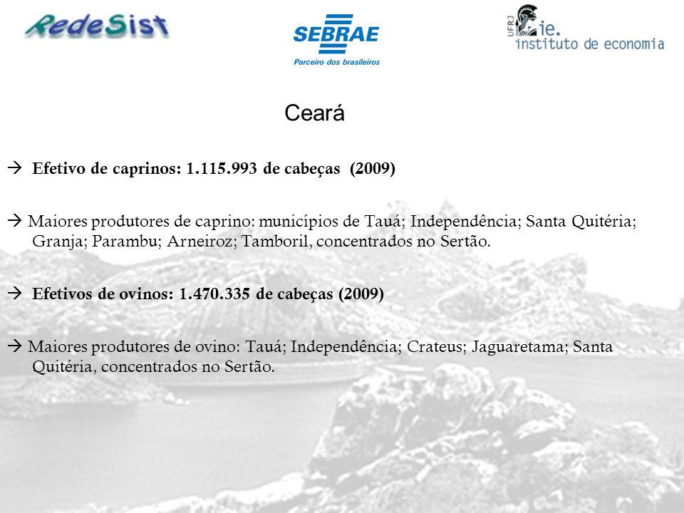 Ceará Efetivo de caprinos: 1.115.993 de cabeças (2009) Maiores produtores de caprino: municípios de Tauá; Independência; Santa Quitéria; Granja; Param