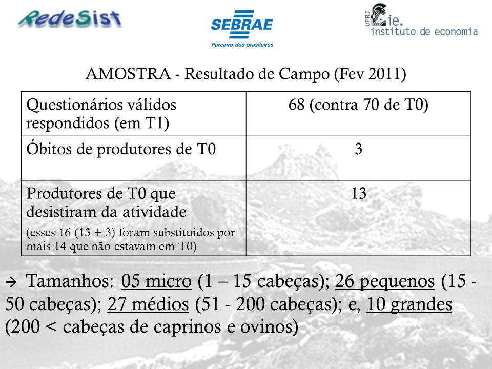 AMOSTRA - Resultado de Campo (Fev 2011) Questionários válidos respondidos (em T1) 68 (contra 70 de T0) Óbitos de produtores de T03 Produtores de T0 qu