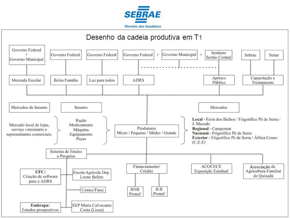 Variação do número de produtores de T0 para T1, segundo o porte (2003 – 2010/11) Micro Produtores: dado inexistente em T0 (T1 = 7,35%) Pequenos Produtores: 38,2% ( 52,94%T0) Médios Produtores: 39,7% ( 42,55%T0) Grandes Produtores: 14,7% ( 66,66%T0)