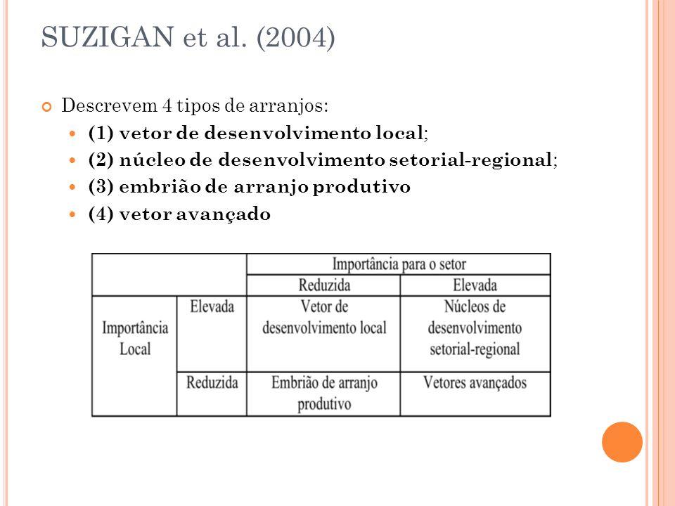 SUZIGAN et al. (2004) Descrevem 4 tipos de arranjos: (1) vetor de desenvolvimento local ; (2) núcleo de desenvolvimento setorial-regional ; (3) embriã