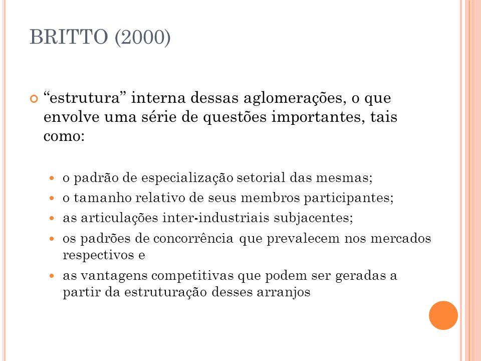 BRITTO (2000) estrutura interna dessas aglomerações, o que envolve uma série de questões importantes, tais como: o padrão de especialização setorial d
