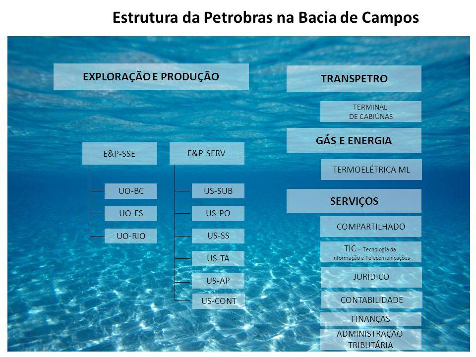 EXPLORAÇÃO E PRODUÇÃO UO-BC UO-ES UO-RIO E&P-SSE TRANSPETRO GÁS E ENERGIA SERVIÇOS COMPARTILHADO TIC - Tecnologia da Informação e Telecomunicações TER