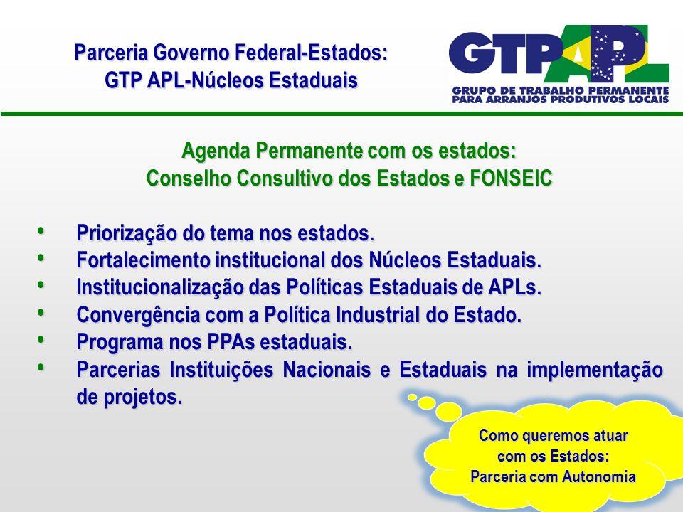 Agenda Permanente com os estados: Conselho Consultivo dos Estados e FONSEIC Priorização do tema nos estados.