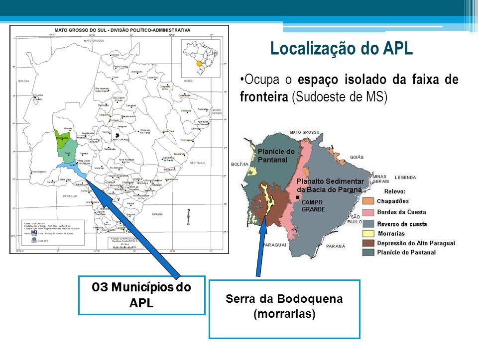 03 Municípios do APL Serra da Bodoquena (morrarias) Localização do APL Ocupa o espaço isolado da faixa de fronteira (Sudoeste de MS)