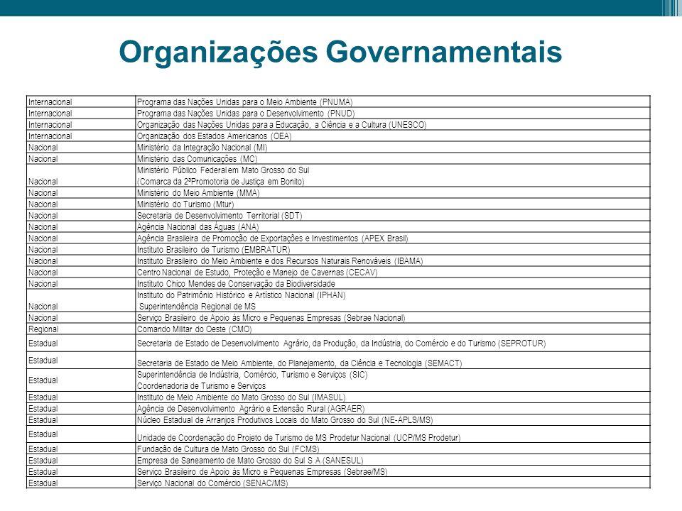 Organizações Governamentais InternacionalPrograma das Nações Unidas para o Meio Ambiente (PNUMA) InternacionalPrograma das Nações Unidas para o Desenv
