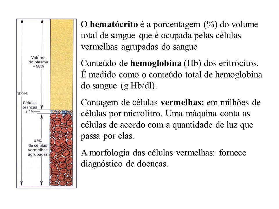 O hematócrito é a porcentagem (%) do volume total de sangue que é ocupada pelas células vermelhas agrupadas do sangue Conteúdo de hemoglobina (Hb) dos