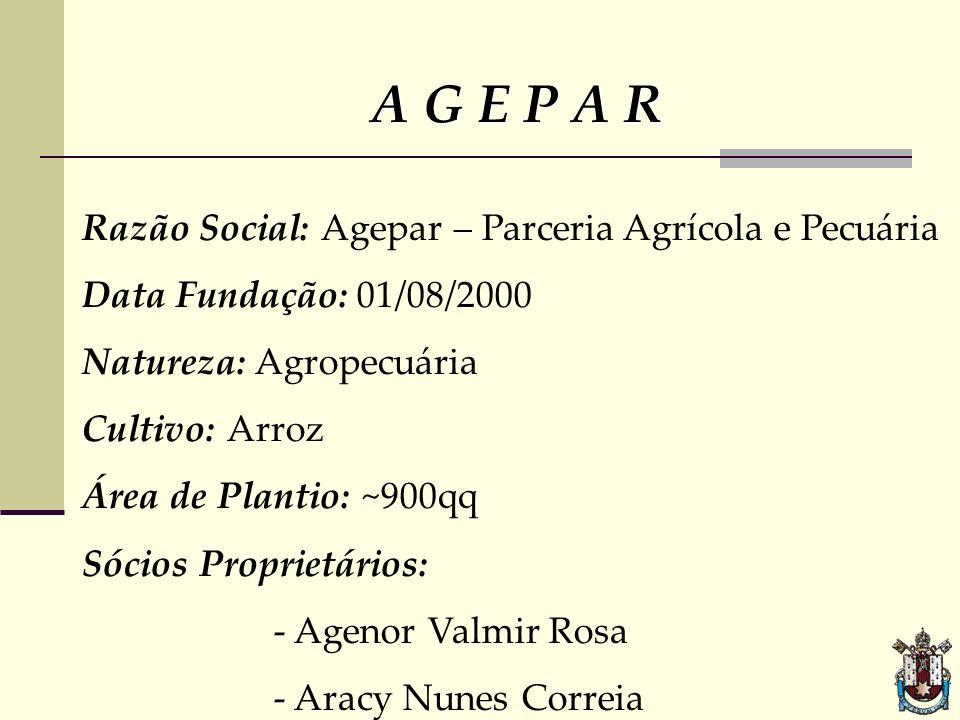 A G E P A R Razão Social: Agepar – Parceria Agrícola e Pecuária Data Fundação: 01/08/2000 Natureza: Agropecuária Cultivo: Arroz Área de Plantio: ~900q