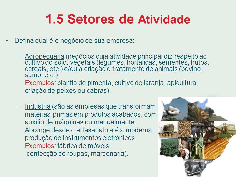 1.5 Setores de Atividade Defina qual é o negócio de sua empresa: –Agropecuária (negócios cuja atividade principal diz respeito ao cultivo do solo: veg