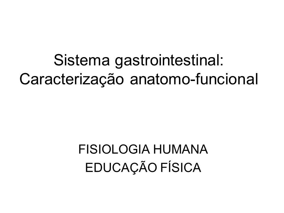 Sistema gastrointestinal: Caracterização anatomo-funcional FISIOLOGIA HUMANA EDUCAÇÃO FÍSICA