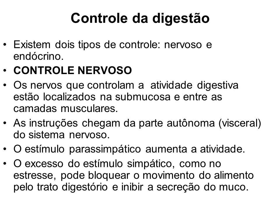Controle da digestão Existem dois tipos de controle: nervoso e endócrino. CONTROLE NERVOSO Os nervos que controlam a atividade digestiva estão localiz