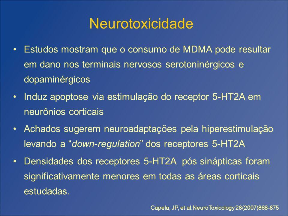 Neurotoxicidade Estudos mostram que o consumo de MDMA pode resultar em dano nos terminais nervosos serotoninérgicos e dopaminérgicos Induz apoptose vi