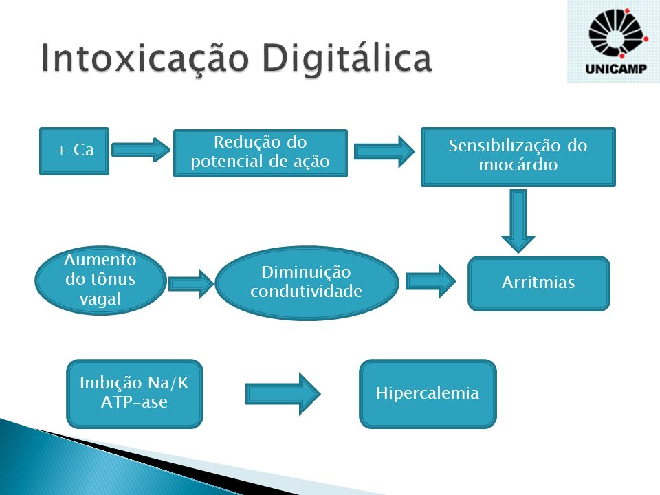 Náuseas Dor abdominal Letargia Confusão Fraqueza Alucinações Ambliopia Xantocromia Anorexia Perda de peso