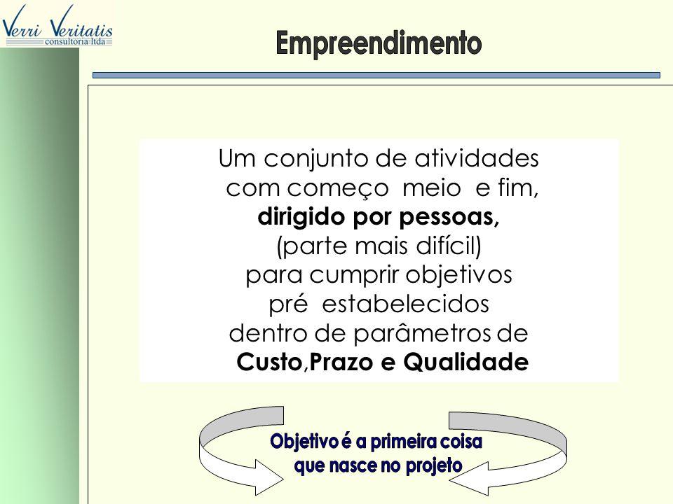 VERRI OBJETIVOS E ÁREAS DE CONHECIMENTO DO P.M.I.