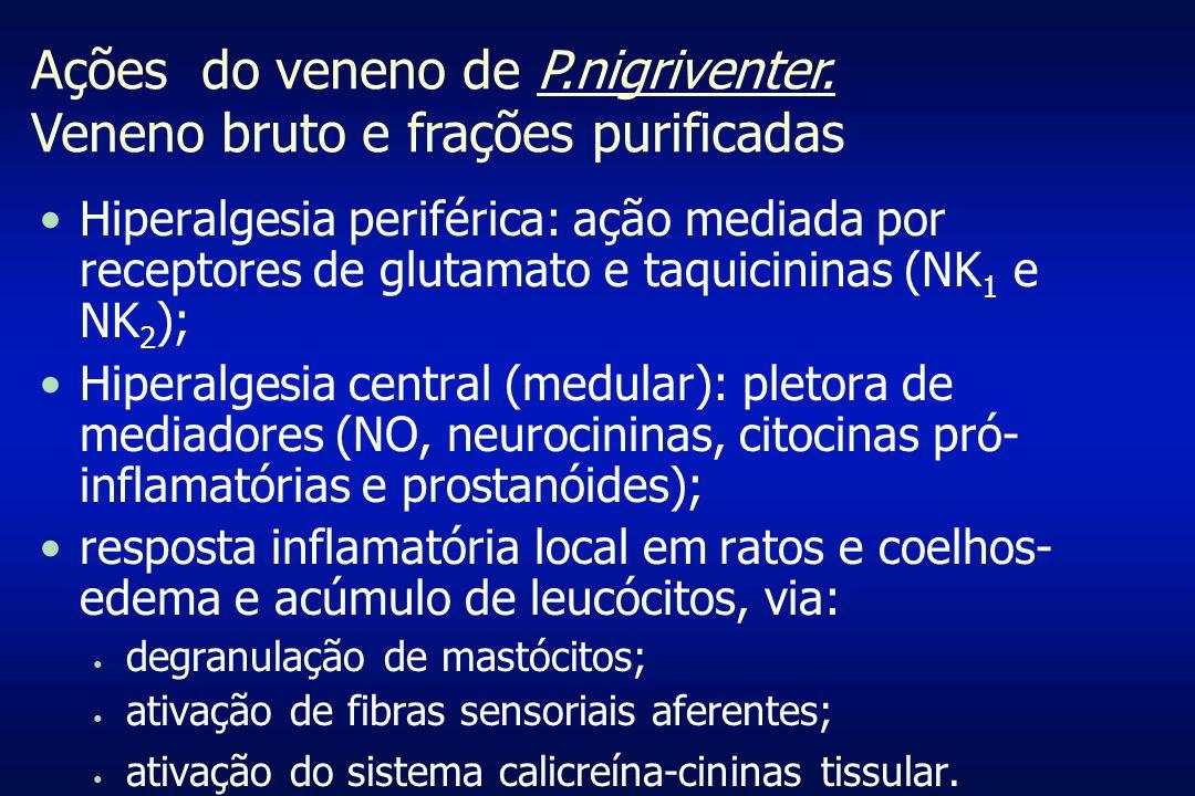 Hiperalgesia periférica: ação mediada por receptores de glutamato e taquicininas (NK 1 e NK 2 ); Hiperalgesia central (medular): pletora de mediadores