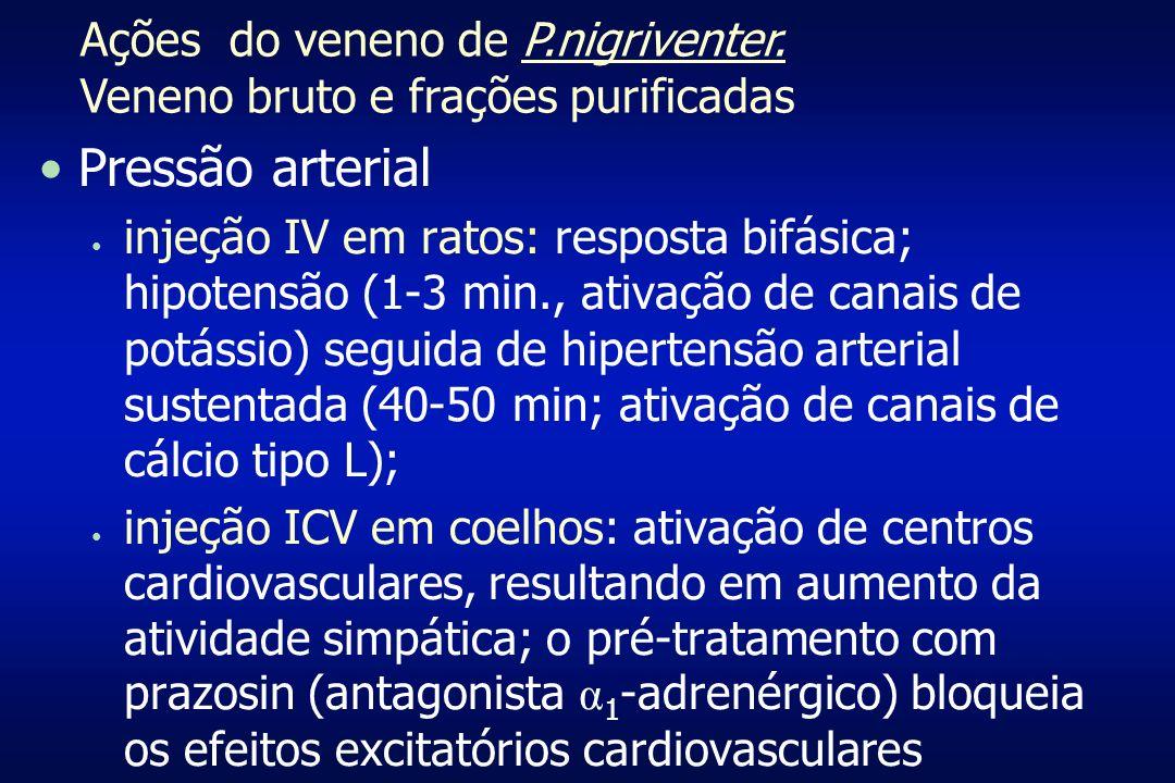 Pressão arterial injeção IV em ratos: resposta bifásica; hipotensão (1-3 min., ativação de canais de potássio) seguida de hipertensão arterial sustent