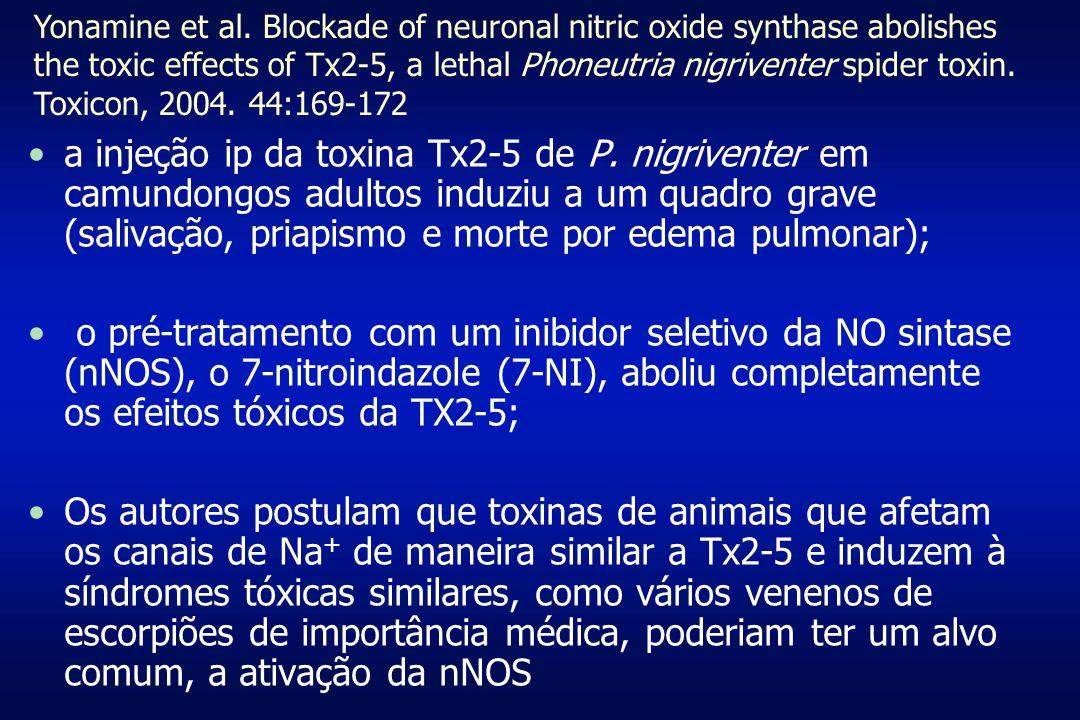 a injeção ip da toxina Tx2-5 de P. nigriventer em camundongos adultos induziu a um quadro grave (salivação, priapismo e morte por edema pulmonar); o p