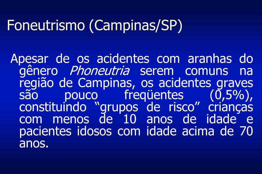 Foneutrismo (Campinas/SP) Apesar de os acidentes com aranhas do gênero Phoneutria serem comuns na região de Campinas, os acidentes graves são pouco fr