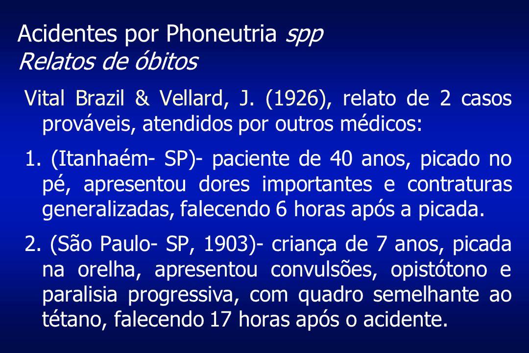 Acidentes por Phoneutria spp Relatos de óbitos Vital Brazil & Vellard, J. (1926), relato de 2 casos prováveis, atendidos por outros médicos: 1. (Itanh