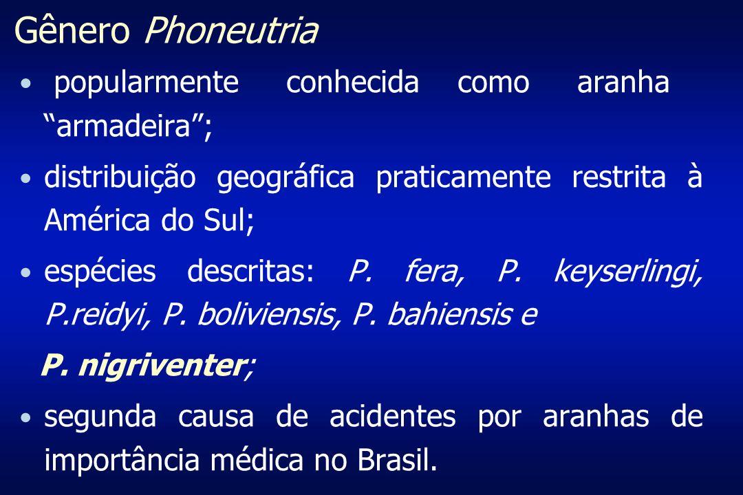 Acidentes por Phoneutria spp Relatos de óbitos Vital Brazil & Vellard, J.