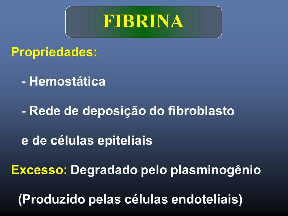 FIBRINA Propriedades: - Hemostática - Rede de deposição do fibroblasto e de células epiteliais Excesso: Degradado pelo plasminogênio (Produzido pelas