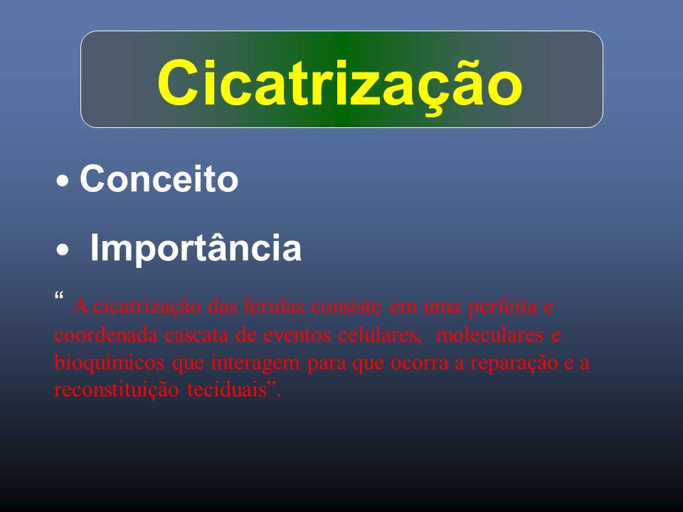 Cicatrização Conceito Importância A cicatrização das feridas consiste em uma perfeita e coordenada cascata de eventos celulares, moleculares e bioquím