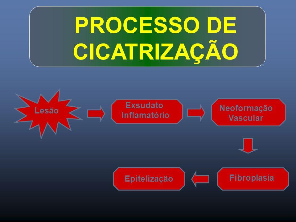 PROCESSO DE CICATRIZAÇÃO Lesão Exsudato Inflamatório Neoformação Vascular Fibroplasia Epitelização