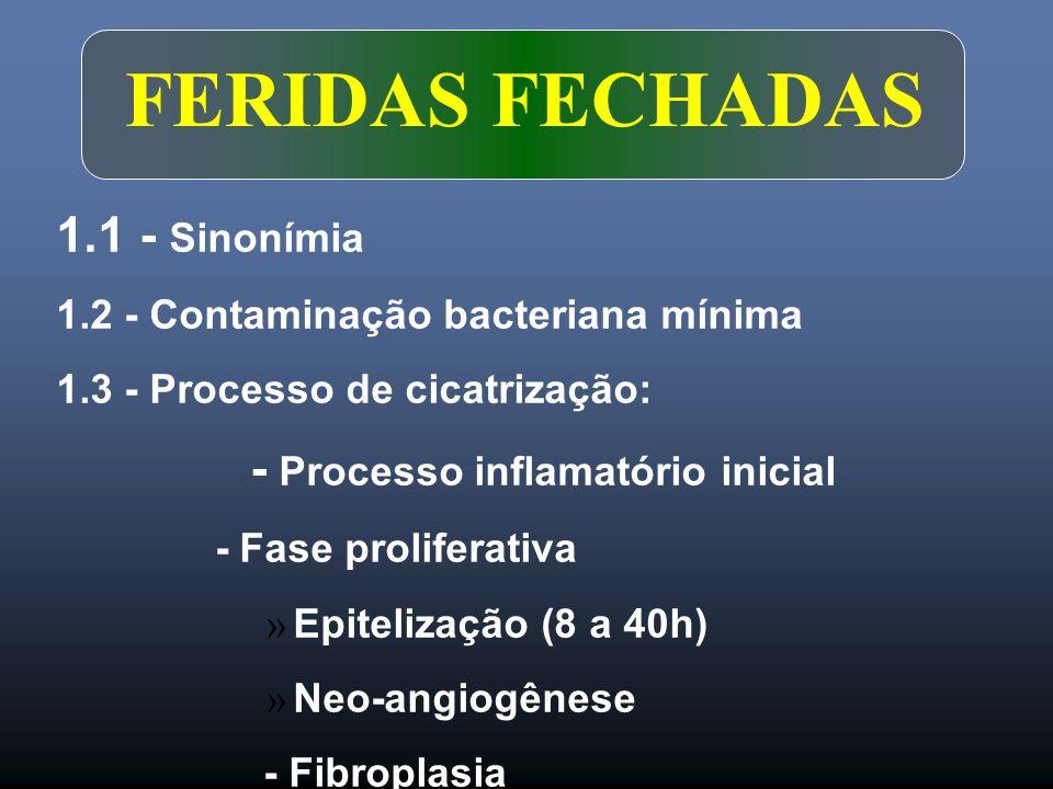 FERIDAS FECHADAS 1.1 - Sinonímia 1.2 - Contaminação bacteriana mínima 1.3 - Processo de cicatrização: - Processo inflamatório inicial - Fase prolifera