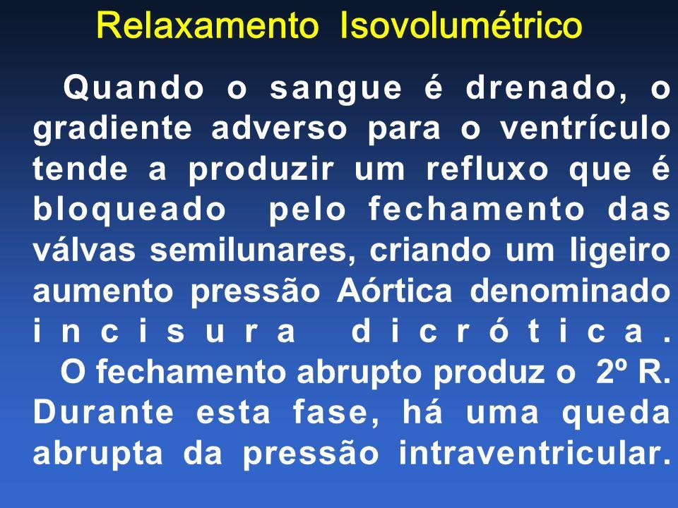 Relaxamento Isovolumétrico Quando o sangue é drenado, o gradiente adverso para o ventrículo tende a produzir um refluxo que é bloqueado pelo fechament